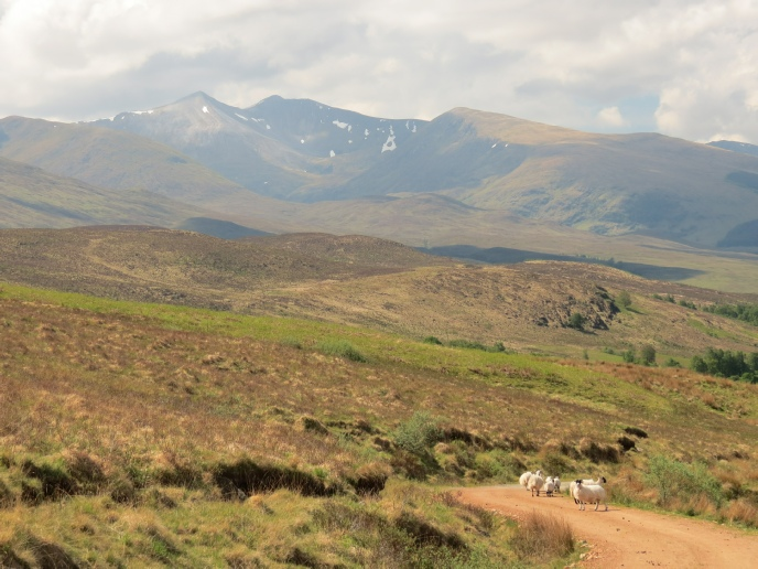Just one of the views available on a short walk up Glen Roy from our cosy log cabin hideaway