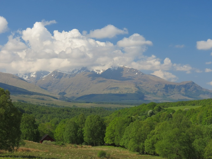 Showing the woodland location of our log cabins with Leanachan Forest, and snow-capped Aonach Mor and Nevis Range in the distance